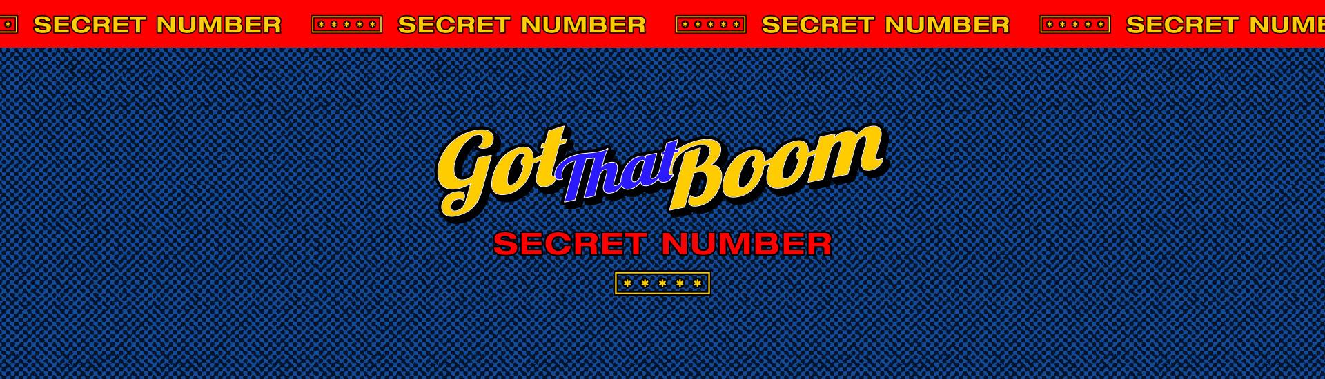 SECRET NUMBER - Global Video Call Event